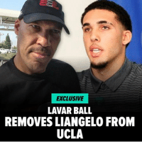Basketball, Memes, and Trump: EXCLUSIVE  LAVAR BALL  REMOVES LIANGELO FROM  UCLA It's a stunning move ... LiAngelo Ball will no longer be on the UCLA basketball team and in fact he will not be a student at UCLA ... because his father Lavar Ball is removing him from the institution. READ MORE AT TMZ. ucla uclabasketball tmz lavarball trump tmzsports liangeloball