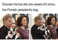 Presidents, Dog, and You: Excuse me but are you aware of Lennu,  the Finnish presidents dog