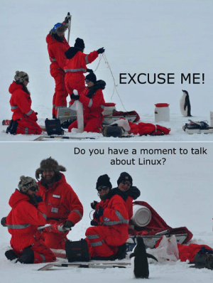 Tumblr, Blog, and Linux: EXCUSE ME!  Do you have a moment to talk  about Linux? awesomesthesia:  Our Lord And Savior Mr. Torvalds