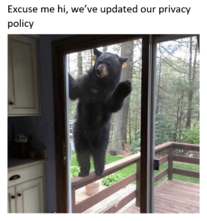 Policy, Excuse Me, and Excuse: Excuse me hi, we've updated our privacy  policy
