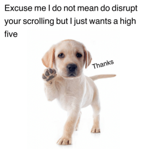 Up High!: Excuse me I do not mean do disrupt  your scrolling but I just wants a high  five  Thanks Up High!