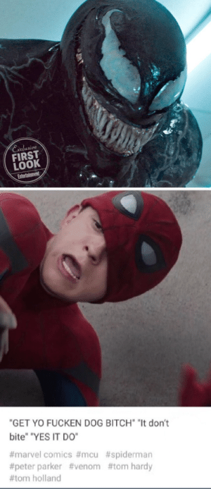 "Leaked image from Spider-Man Far From Home.: Exelusive  FIRST  LOOK  ""GET YO FUCKEN DOG BITCH ""It don't  bite"" ""YES IT DO""  #marvel comics #mcu #spiderman  #peter parker #venom #tom hardy  #tom holland Leaked image from Spider-Man Far From Home."