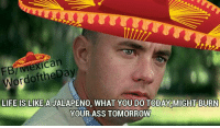 Turned a bunch of memes into Mexican memes, hope you enjoy them :): exican  LIFE IS LIKE A  WHAT YOU DO TODAY MIGHT BURN  YOUR ASS TOMORROW Turned a bunch of memes into Mexican memes, hope you enjoy them :)