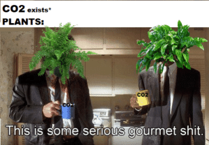Dank, Memes, and Shit: exists*  PLANTS:  CO2  co  This is some serious gourmet shit meirl by Mr-Berecz MORE MEMES