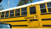 this is how we roll: EXIT  EMERGENCY  TUMBLEWEED  CA| 38508  TCP 8522-Z