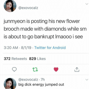Android, Big Dick, and Energy: @exovocalz  junmyeon is posting his new flower  brooch made with diamonds while sm  is about to go bankrupt Imaooo i see  3:20 AM 8/1/19 Twitter for Android  372 Retweets 829 Likes  @exovocalz 7h  big dick energy jumped out EXO memes