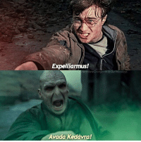 Expelliarmus Hermionegranger44e Avada Kedavra Collab With What Spell Would You Use If You Were Duelling Voldemort Beautyandthebeast Fantasticbeastsandwheretofindthem Fantasticbeasts Harrypotter Harmione Voldemort Expeliarmus Avadakedavra