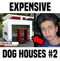 Bored, Cats, and Dogs: EXPENSIVE  A MODERN VIBE  OICE OF BORED BADGER  f @ GabeErwin  DOG HOUSES cats OR dogs? • follow me (@gabe) for more • 👇🏻 TAG YOUR FRIENDS 👇🏻