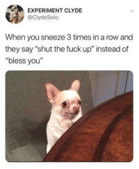 "Fuck, Shut the Fuck Up, and Humans of Tumblr: EXPERIMENT CLYDE  @ClydeSolo  When you sneeze 3 times in a row and  they say ""shut the fuck up"" instead of  ""bless you"""
