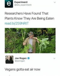 These plants are not safe!: Experiment  @lets experiment  Researchers Have Found That  Plants Know They Are Being Eaten  read.bi/259NRtT  Joe Rogan  @joerogan  Vegans gotta eat air now These plants are not safe!