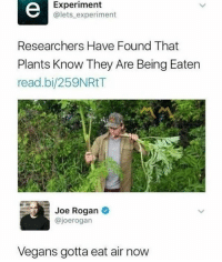 Follow @sigh: Experiment  @lets experiment  Researchers Have Found That  Plants Know They Are Being Eaten  read.bi/259NRtT  Joe Rogan  @joerogarn  Vegans gotta eat air now Follow @sigh