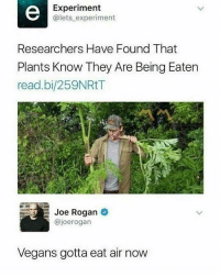 Dead. 😂 @joerogan: Experiment  @lets experiment  Researchers Have Found That  Plants Know They Are Being Eaten  read.bi/259NRtT  Joe Rogan  @joerogarn  Vegans gotta eat air now Dead. 😂 @joerogan