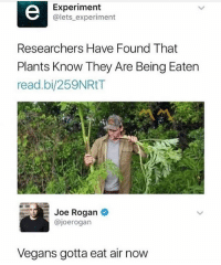 Funny, Meme, and Air: Experiment  @lets experiment  Researchers Have Found That  Plants Know They Are Being Eaten  read.bi/259NRtT  Ou/  loe Rogan  @joerogan  Vegans gotta eat air now @laughsmuch is my favourite meme account right now🔥👌