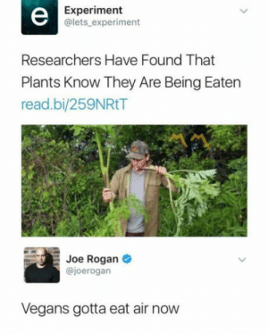 PLaNtS hAvE fEeLiNgS tOo  : Experiment  @lets experiment  Researchers Have Found That  Plants Know They Are Being Eaten  read.bi/259NRtT  Joe Rogan  @joerogan  Vegans gotta eat air now  PLaNtS hAvE fEeLiNgS tOo
