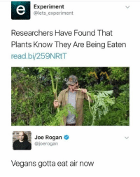 Lmao: Experiment  @lets_experiment  Researchers Have Found That  Plants Know They Are Being Eaten  read.bi/259NRtT  Joe Rogan  @joerogan  Vegans gotta eat air now Lmao
