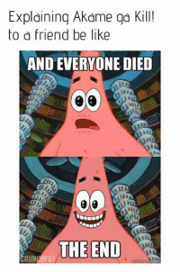 Pretty much.: Explaining Akame ga Kill!  to a friend be like  AND EVERYONE DIED  Hit  THE END  in  RUN Pretty much.