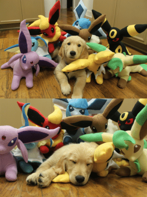Tumblr, Blog, and Golden Retriever: explodingdragons:  michaelceraofpain:  ITS A GOLDEN RETRIEVER PUPPY WITH THE EEVEELUTIONS  IT'S A GOLDEN RETREEVEE.