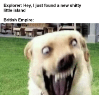 The sun never sets https://t.co/9qKID7XoSu: Explorer: Hey, I just found a new shitty  little island  British Empire: The sun never sets https://t.co/9qKID7XoSu