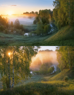 expressions-of-nature:Fragments of a Foggy Dawn by Dmitry Medyancev: expressions-of-nature:Fragments of a Foggy Dawn by Dmitry Medyancev