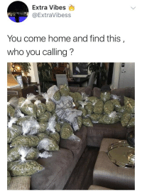 """Blackpeopletwitter, Home, and Voice: Extra Vibes  @ExtraVibess  You come home and find this  who you calling? <p>*Alicia Keys voice* """"NO ONE, NO ONE, NOOOOO ONNNNNEEEEEEE"""" (via /r/BlackPeopleTwitter)</p>"""
