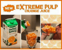 The best orange juice is the kind you have to chew: EXTREME PULP  ORANGE JUICE  NEW  EXTREME PULP  EXTREME PULP  Floridas  Natural  00% Orange The best orange juice is the kind you have to chew