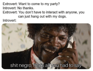 Dank, Dogs, and Introvert: Extrovert: Want to come to my party?  Introvert: No thanks.  Extrovert: You don't have to interact with anyone, you  can just hang out with my dogs.  Introvert:  shit negro, thats all you had to say Always look for the doggos at the party by C0smicBrownies MORE MEMES