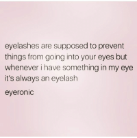Memes, Queen, and 🤖: eyelashes are supposed to prevent  things from going into your eyes but  whenever i have something in my eye  it's always an eyelash  eyeroniC Eyeronic 😭 Follow my queen @northwitch69 @northwitch69 @northwitch69 @northwitch69