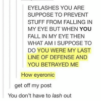 EYELASHES YOU ARE  SUPPOSE TO PREVENT  STUFF FROM FALLING IN  MY EYE BUT WHEN YOU  FALL IN MY EYE THEN  WHAT AM I SUPPOSE TO  DO YOU WERE MY LAST  LINE OF DEFENSE AND  YOU BETRAYED ME  How eyeronic  get off my post  You don't have to lash out Oml😂😂😂😂😂 ~Kj imlashingout funny lol cleanmemes clean funny rofl eyelashes