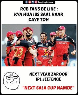 "#RCBvSRH #IPL: f (0回 /LaughingColours  RCB FANS BE LIKE:  KYA HUA ISS SAAL HAAR  GAYE TOH  UGIONEE  造  GIO  NEXT YEAR ZAROOR  IPL JEETENGE  ""NEXT SALA CUP NAMDE"" #RCBvSRH #IPL"