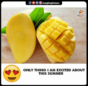 Summer, Indianpeoplefacebook, and This: f  (8)/LaughingColours  GHING  ONLY THINGI AM EXCITED ABOUT  THIS SUMMER #Mangoes #Summer