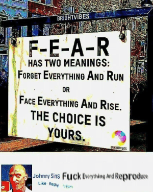 Dank, Life, and Memes: F-E-A-R  HAS TWO MEANINGS:  FORGET EVERYTHING AND Run  FACE EVERYTHING AND RisE.  THE CHOICE IS  YOURS  OR  BRGHTVIBES  Johnny Sins Fuck Everything And Reproduo  Like Reply 16n Sin and fear for life by XilentXenocide MORE MEMES