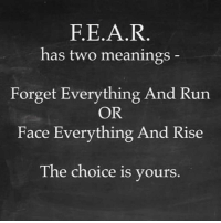 The Choice Is Yours: F.E.A.R  has two meanings  Forget Everything And Run  OR  Face Everything And Rise  The choice is yours
