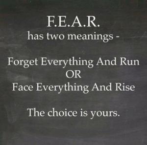laughoutloud-club:  You Choose The Meaning: F.E.A.R  has two meanings  Forget Everything And Run  OR  Face Everything And Rise  The choice is yours laughoutloud-club:  You Choose The Meaning