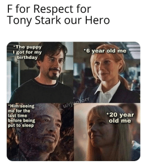 I Love you 3000: F for Respect for  Tony Stark our Hero  The puppy  I got for my  birthday  *6 year old me  Him seeing  me for the  last time  before being  put to sleep  u/rjunforr  20 year  old me I Love you 3000