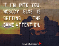 Friends, Love, and Memes: F I'M INTO YOU  NOBODY ELSE IS  THE  GETTING  SAME ATTENTION  Like Love Quotes.com If i'm into you, nobody else If you lend a friend five dollars and never see him or her again, it was worth it.is getting the same attention.
