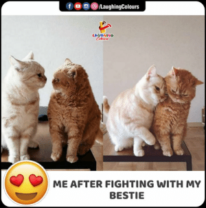 #fightwithbestie #FunnyMemes #FunnyJokes: f /LaughingColours  LAUGHING  Celeurs  ME AFTER FIGHTING WITH MY  BESTIE #fightwithbestie #FunnyMemes #FunnyJokes