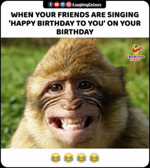 Happy Birthday To: f /LaughingColours  WHEN YOUR FRIENDS ARE SINGING  'HAPPY BIRTHDAY TO YOU' ON YOUR  BIRTHDAY  LAUGHING  Colours