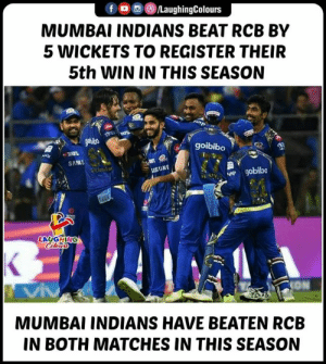#MIvRCB #IPL: f O/LaughingColours  MUMBAI INDIANS BEAT RCB BY  5 WICKETS TO REGISTER THEIR  5th WIN IN THIS SEASON  goibibo  SAMS  USUNG  LAUGHING  MUMBAI INDIANS HAVE BEATEN RCB  IN BOTH MATCHES IN THIS SEASON #MIvRCB #IPL