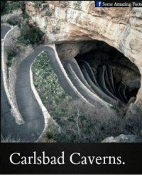 Facts, Memes, and Amazing: f Some Amazing Facts  Carlsbad Caverns