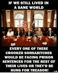America, Memes, and News: F WE STILL LIVED IN  A SANE WORLD  EVERY ONE OF THESE  CROOKED SONSABITCHES  WOULD BE FACING PRISON  SENTENCES FOR THE REST OF  THEIR LIVES OR THEY'D BE  HUNG FOR TREASON! GM NRA molonlabe UncleSamsMisguidedChildren conservative 2a military veteran 2Amendment Police donaldtrump hillaryclinton usmc USMarine tactical hillaryforprison2016 Trump2016 gun Politics AMERICA AR15 Republican Truth USA News HillaryForPrison Constitutionalist Capitalism Infantry BreakingNews