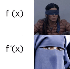 Dank, Memes, and Target: f (x)  f (x)  -1 Thats how functions work by yuvraj108c MORE MEMES
