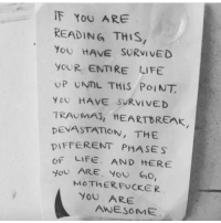 Life, Awesome, and Reading: F YoU ARE  READING THIS  You HAVE SURVI VED  yoUR ENTIRE LIFE  UP UNTL THIS POINT  YoU HAVE SURVIVED  TRAUMAS, HEARTBREAK  DEVASTATION, THE  DIFFERENT PHASES  OF LIFE. AND HERE  OU ARE , you GO!  MOTHERFUCKER  YOU ARE  AWESOME