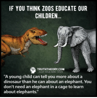 """Via Truth Theory: F YOU THINK ZOOS EDUCATE OUR  CHILDREN  TRUTH THEORY COM  KEEP YOUR MIND OPEN  """"A young child can tell you more about a  dinosaur than he can about an elephant. You  don't need an elephant in a cage to learn  about elephants Via Truth Theory"""