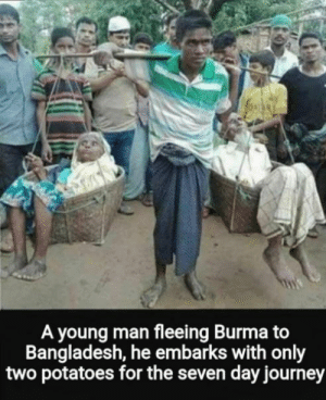 4 wan sense an day: f0TAR  A young man fleeing Burma to  Bangladesh, he embarks with only  two potatoes for the seven day journey 4 wan sense an day