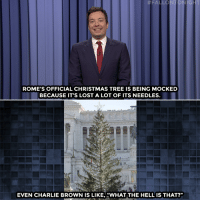 "Charlie, Christmas, and Jimmy Fallon:  #FA LO  ROME'S OFFICIAL CHRISTMAS TREE IS BEING MOCKED  BECAUSE IT'S LOST A LOT OF ITS NEEDLES.  EVEN CHARLIE BROWN IS LIKE,""WHAT THE HELL IS THAT?"" <p><a href=""https://www.youtube.com/watch?v=mu-X8R_2WWM"" target=""_blank"">Jimmy Fallon's Monologue; December 20, 2017</a><br/></p>"