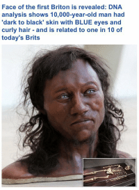 Old Man, Target, and Tumblr: Face of the first Briton is revealed: DNA  analysis shows 10,000-year-old man had  'dark to black' skin with BLUE eyes and  curly hair and is related to one in 10 of  today's Brits whyyoustabbedme:Reblog to make racists mad