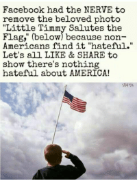 "America, Facebook, and Memes: Facebook had the NERVE to  remove the beloved photo  ""Little Timmy Salutes the  Flag,"" (below) because non-  Americans find it ""hateful.""  Let's all LIKE & SHARE to  show there's nothing  hateful about AMERICA!  $84TK UNACCEPTABLE!  Spread This Everywhere! 🇺🇸️🇺🇸️"