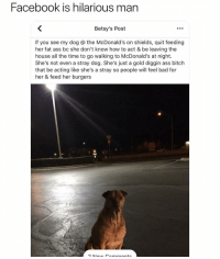 Ass, Bad, and Bitch: Facebook is hilarious man  Betsy's Post  If you see my dog the McDonald's on shields, quit feeding  her fat ass bc she don't know how to act & be leaving the  house all the time to go walking to McDonald's at night.  She's not even a stray dog. She's just a gold diggin ass bitch  that be acting like she's a stray so people will feel bad for  her & feed her burgers Lmao gotta respect the hustle