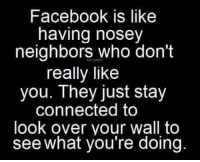 Nosey Neighbor: Facebook is like  having nosey  neighbors who don't  really like  you. They just stay  connected to  look over your wall to  see what you're doing.