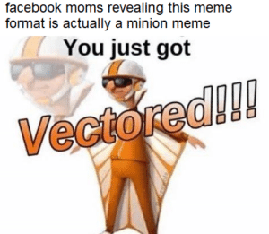 sorry folks, its the truth: facebook moms revealing this meme  format is actually a minion meme  You just got  Vectored!! sorry folks, its the truth